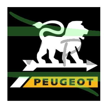 Courroie rabots PEUGEOT FIP30