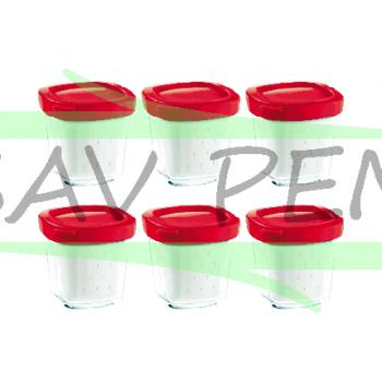 Lot de 6 pots pour yahourtieres SEB Delices / Multi Delices  / XF100501